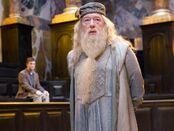 HP5 Albus Dumbledore