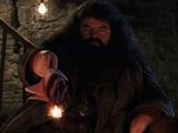 Rubeus Hagrid's wand