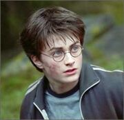 Harry-potter-acne