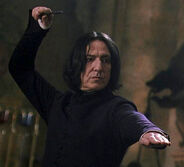 Accepted Combative Position Snape