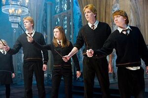 I Weasley nell'ES