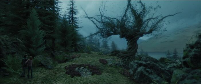 Whompingwillow