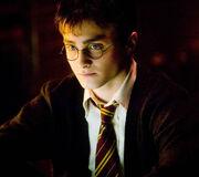 Harry5.5