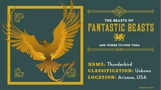 What Is a Thunderbird? The Beasts Of Fantastic Beasts And Where To Find Them