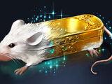 Métamorphose d'une souris en tabatière