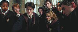 Gryffindors admiring Harry's firebolt