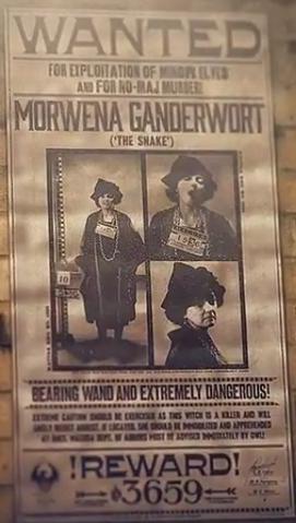 File:Morwena Ganderwort - wanted poster.png