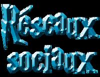 Accueil-RS n°2