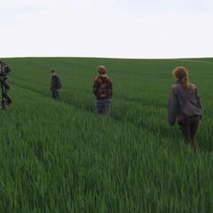 Съёмки Трио в поле