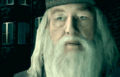Screenshot 453 (Nintendo DS).png