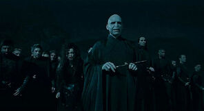 Voldemort and his Death Eaters