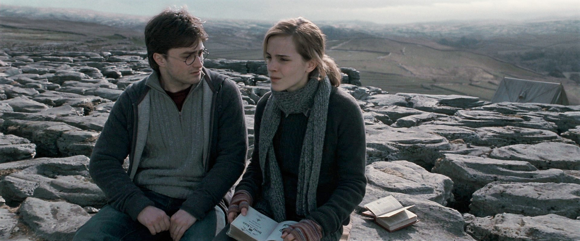 why didnt harry and hermione hook up