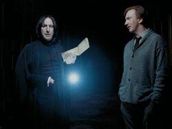 Severus s Rimus
