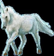 UnicornWU
