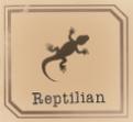 Beast identifier - Reptilian