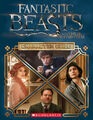 Fantastic Beasts Character Guide - cover.jpg