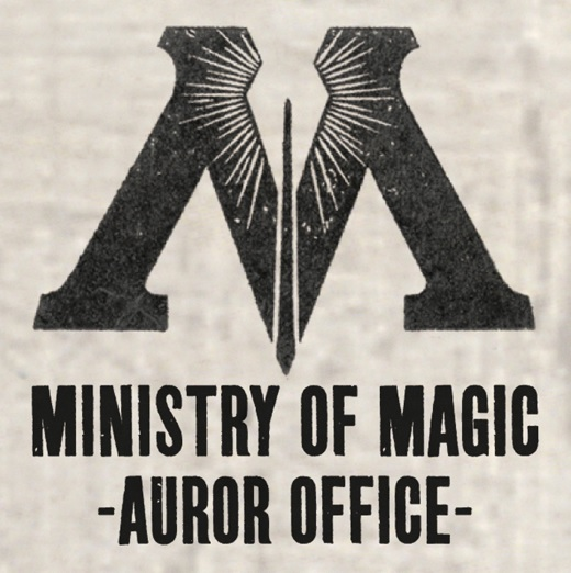 Auror | Harry Potter Wiki | FANDOM powered by Wikia