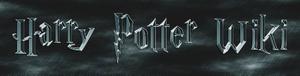 New harry potter wiki logo