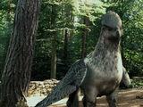 Hogwarts Hippogriff herd