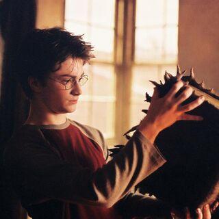 Гарри с Чудовищной книгой о чудовищах