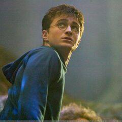 Гарри Поттер в Запретном лесу