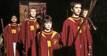 Gryffindor team