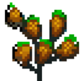 Dried Nettles.PNG