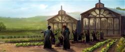 Cieplarnie (Pottermore)