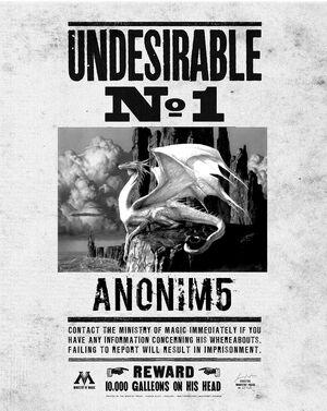 Anonim5 wywiad