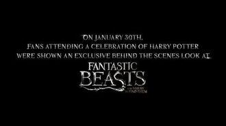 Fantastic Beasts and Where to Find Them - Highlight Reel from A Celebration of Harry Potter HD-0