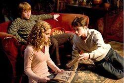 Harry, Ronny og Hermine