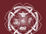 Escola de Magia e Bruxaria de Ilvermorny
