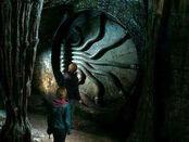 Рон и Гермиона в Тайной комнате