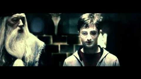 Harry Potter & the Deathly Hallows Part 1 Voldemort and Olivander Scene I