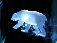 Polar Bear Patronus