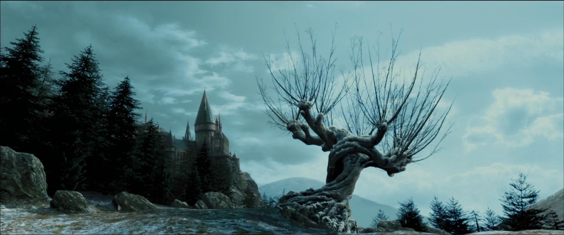 Willowhogwarts