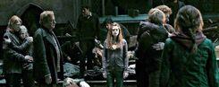 Weasley dh2
