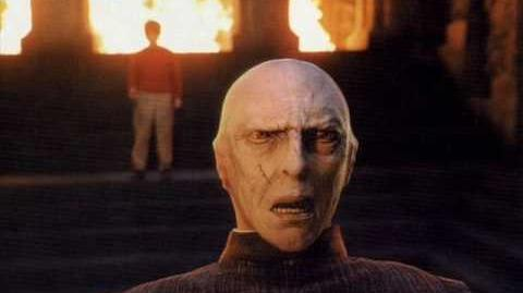 17. The Face of Voldemort