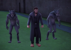 Greyback and his pack