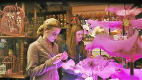Hermione and Ginny at the Weasley's Wizard Wheezes Shop