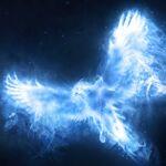 Patronus Phoenix