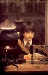 HarryQuillSS