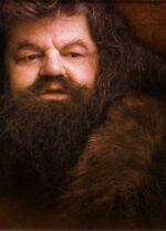 9 Hagrid