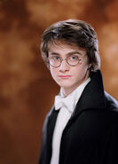 Daniel Radcliffe as Harry Potter (GoF-01)