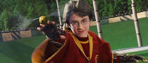 Harry potter łapiący znicz