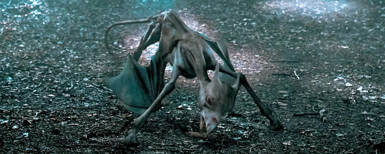 Bạn biết gì về Vong Mã - loài sinh vật huyền bí có vẻ ngoài chết chóc trong Harry Potter? - Ảnh 5.