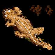 Ginger-newt-lrg