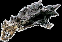 Дракорекс хогвартский 01