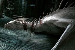 Украинский железнобрюхий дракон (ГПиДС2)