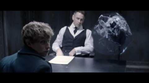 Graves interrogates Newt (Fantastic Beast and Where to Find Them)